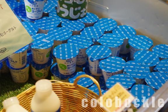 町村農場ミルクガーデンmilkgardenソフトクリームアイス