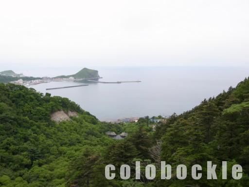 北海道旅行利尻島うにウニ利尻昆布